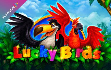 Lucky Birds Playson