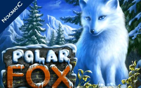 Polar Fox Novomatic