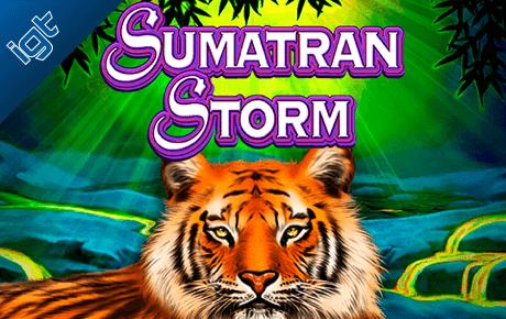 Sumatran Storm Igt Wagerworks