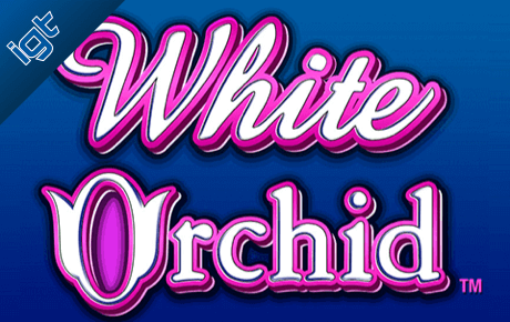 White Orchid Igt Wagerworks