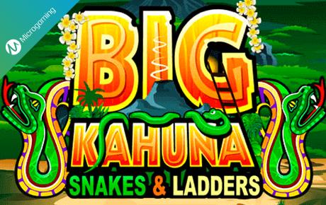 Big Kahuna Snakes And Ladders Microgaming