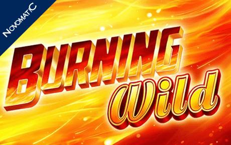 Burning Wild Novomatic