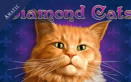 Diamond Cats Amatic Industries