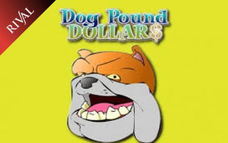 Dog Pound Dollar Rival