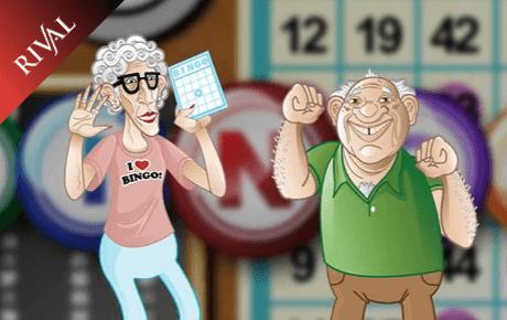 Five Reel Bingo Slot Rival